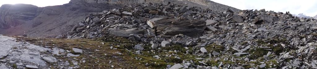 Der Blockgletscher «Gemmi/Furggentälti», im Hintergrund die «Plattenhörner»