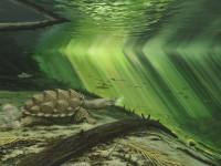 La tortue ninja du Jurassique supérieur