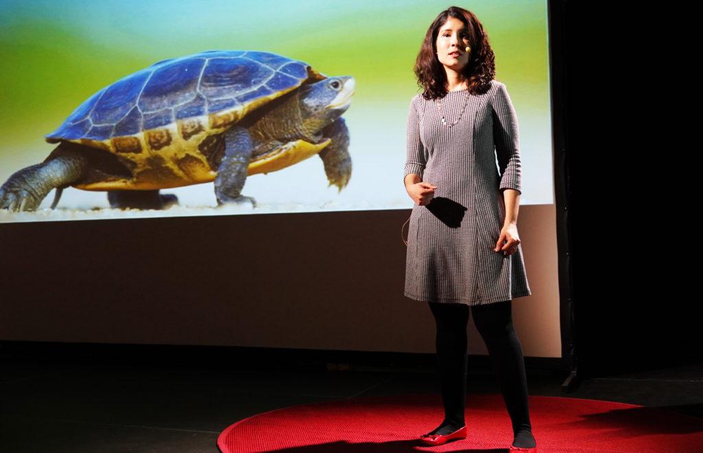 Rafaella Garbin, gagnante de l'édition 2018, ouvre le bal avec son exposé sur les carapaces de tortues.