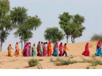 Marches à suivre. 5000 ans de processions et pèlerinages