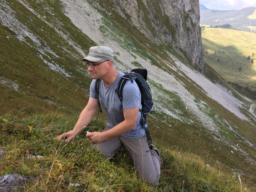 Travail de terrain | Arenaria bernensis | Copyright: Jardin botanique